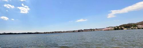 Tidal Basin-whole view 1.jpg