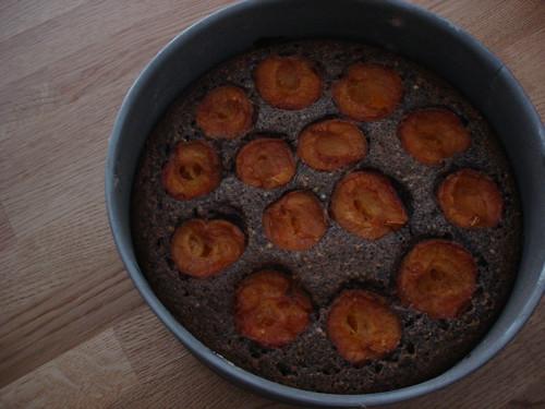 apricot poppy seed cake von Ihnen.