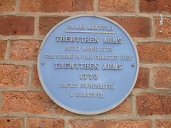 Photo of Trewythen Arms and Llanidloes Chartist riot blue plaque