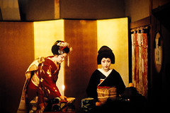 tea ceremony (moaan) Tags: leica 50mm kyoto f10 maiko geiko utata  kitano noctilux tradition 2009 leicam7 odori m7  croppped   explored kaburenjo kitanoodori   japanesetradition  leicanoctilux50mmf10 otemae ichimame kodakektachrome400x    kamishichikenkaburenjo ichimomo  ochaseki giltfoldingscreen httpichidreamblogjp gettyimagesjapanq1 gettyimagesjapanq2