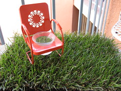 My new lawn chair