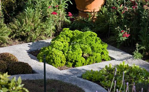 Italian herb garden
