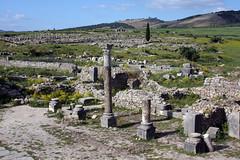 Towards The Tangier Gate (MykReeve) Tags: sky ruins roman horizon hill columns hills morocco column volubilis tangiergate geo:lat=34072773 geo:lon=555427