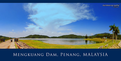 Mengkuang Series #5 (Panorama)