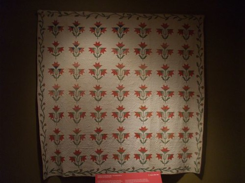 Northern or Carolina Lily - circa 1850s-60s