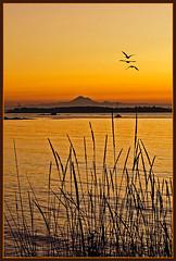 Fall Sunrise - South Vancouver Island (TT_MAC) Tags: ocean sunrise landscape vancouverisland pacificocean pacificnorthwest victoriabc theperfectphotographer flickrclassique qualityofsurroundings