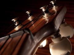 Day [9] Compact (MichaelHutton) Tags: canon ukulele project365 kamaka strobist