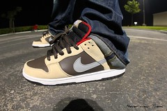 WDYWT 6-11-11 (Never Wear Them) Tags: red brown silver dark shoes you chocolate low skating nike wear skateboard what did today sb dunk