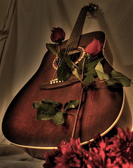 Penny with flowers (S. James Photography) Tags: flowers guitar hdr artandluthrie