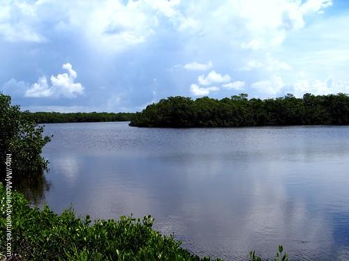 IMG_0592-Sanibel-Mangroves-Clouds