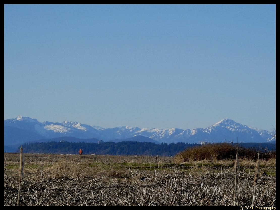 View of UBC