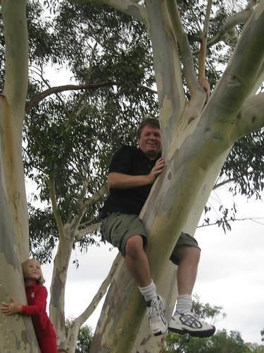 Kevin climbing a tree
