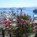 Tour por Valparaiso - Chile Study Abroad