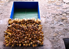 Groc de Montagut (Núria. c) Tags: yellow canon powershot amarillo balcón groc corncob balcó montagut g10 panochas panotxes