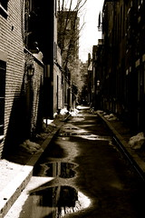 The most photographed alley in Boston (creativity_unmastered) Tags: life light sky blackandwhite snow cold reflection tree green ice nature water colors beautiful beauty grass clouds dark landscape visions landscapes seaside still interesting sand alley long open waterfront earth stones air large deep warmth sunsets sunny places retro divine domestic walkway jungle simplicity terrible manmade nostalgic distance simple majestic puddles outofplace centered pleasure diffused regal feelings dank daring oldtimey decrepid continuous captivating shaddows trodden freezingcold causation impenitrable waterinterest lightspecific