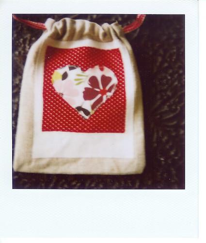 polaroid pouch