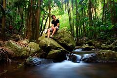 Sitting still (michael.mcc) Tags: water creek palms moss rainforest rocks long exposure brodie falls mount jungle tambourine curtis