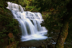 Liffey Falls (Celtics24) Tags: longexposure water waterfall rainforest australia falls liffey slowshutter tasmania worldheritage liffeyfalls