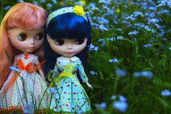 Wild Flowers, Green Grass, and Pretty Dolls