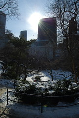 Glowing Solow (oceaneyze) Tags: nyc winter sun snow ny newyork centralpark manhattan solow solowbuilding