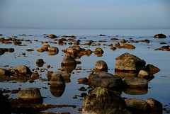 Rocks that make you contemplate (Let Ideas Compete) Tags: travel sea reflection nature water stone landscape fun island coast spring rocks europe quiet sweden stones postcard gulls scenic rocky peaceful swedish surface calm baltic shore april reflective pensive serene shallow geology gotland fabulous naturalbeauty scandinavia picturesque litoral scandinavian visby glassy clearwater waterscape waterscapes windless shallowwater littoral purewater coth wisby abigfave vacationspot platinumphoto impressedbeauty contemplaton travelsofhomerodyssey