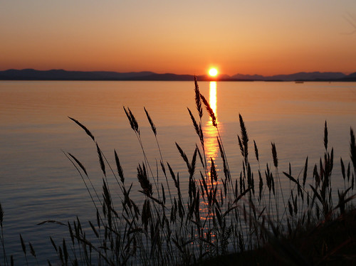 1060412 westside sunset SJI