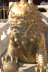 Male Bronze Lion in front of Gate of Heavenly Purity (toadheaven) Tags: china statue bronze beijing lion forbiddencity gateofheavenlypurity