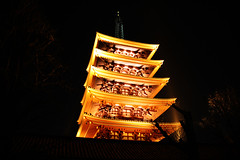 The Five-storied Pagoda in Asakusa, Tokyo, Japan (fabriziogiordano23) Tags: trip travel light holiday japan night temple tokyo pagoda shrine asia journey nippon asakusa viaggio japon notte giappone luce vacanza tempio autofocus flickraward flickrestrellas spiritofphotography fabbow expressyourselfaward platinumpeaceaward todaysbest mygearandme mygearandmepremium flickrstruereflection1