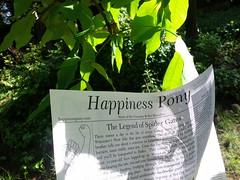 Happiness Pony #3