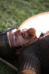 Slain Vikings (jimoftheday) Tags: york festival soldier war battle sword shield viking reenactment jorvik museumgardens canonef70200mmf28lisusm jorvikvikingfestival jórvík