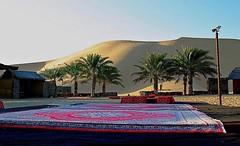 Safari Camp (Bassim BG) Tags: dubai desert arab abu dhabi burj