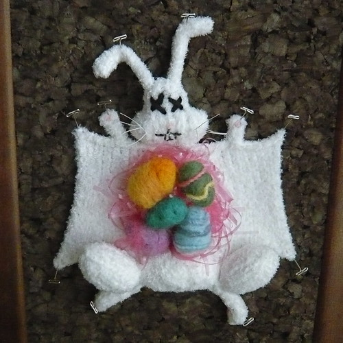 Meet the Easter Bunny Donated His Body To Science