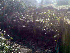 Heath path - before