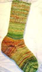 shiny happy socks 006