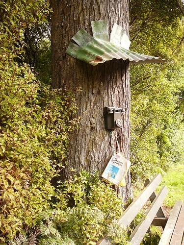 Stewart Island Phone box