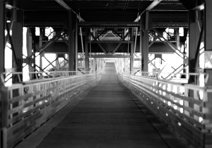 marsupial bridge