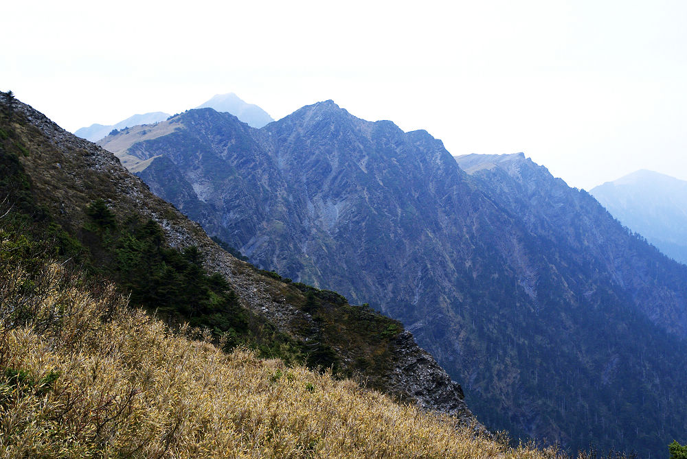 奇萊Day3-59 草坡的另一側是斷崖