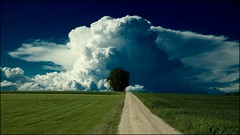 the storm is coming (Ronny Stiffel) Tags: blue sky cloud white tree green field way grey