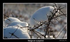 Neige en suspend (fredf34) Tags: winter panorama snow france cold macro art ice nature landscape hiver nieve zen invierno neige paysage froid frio hielo glace larzac languedocroussillon herault caylar fredf34