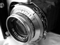 Voigtländer Perkeo II (Jim Somsel) Tags: voigtländer cameraporn perkeoii