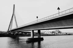 Pont de Wandre (N&B) (NguyenDai) Tags: bridge bw canal blackwhite belgium belgique albert pylon pont lignes meuse noirblanc lige wallonie asymmetric cablestayed wallonia linescurves greisch wandre nguyendai ponthauban dsc4684 invertedy