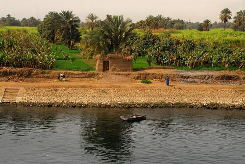 LND_3525 Nile Cruise