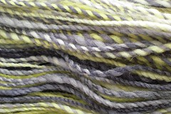 Dyed in the wool - Electric Iris Avenue
