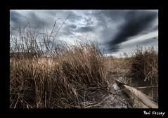 Parkgate. (Paul Fessey) Tags: sky cinema reeds landscape paul photography nikon dramatic d300 parkgate fessey omglawl dontgoseeunborn bigstickpokingoutofbigpuddle