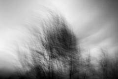 (nicola tramarin) Tags: blur car italia motorway macchina icm mosso blackwhitephotos intentionalcameramovement nicolatramarin