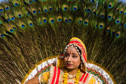 _MG_2274 Peacock the symbol of beauty - Elephant Festival - Jaipur India by © Cameron Herweynen.