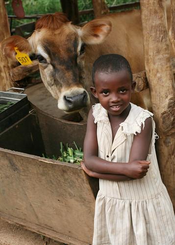 Girl in Rwanda - Heifer International