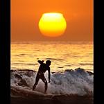 Venice Beach Surfer