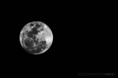 Full Moon. Empty Sky. (Kausthub) Tags: sky cloud moon india night twilight asia shadows handheld moonlight dslr chennai 2009 opalescent supershot mooncraters platinumphoto anawesomeshot canoneos5dmarkii theperfectphotographer rubyphotographer