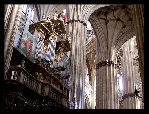 Organo de la Epístola de la Catedral Nueva de Salamanca - Fachada de la Nave